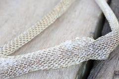 Molto lungamente pelle di serpente di spargimento bianca sul pavimento di legno immagini stock