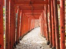 Molto torii rosso santuario Fukuoka Giappone di Inari di toku in YÅ « fotografia stock libera da diritti