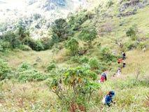 Molto trekking asiatico della gente nell'alta montagna Immagini Stock Libere da Diritti