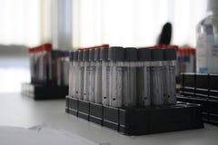 Molto tubo dell'analisi del sangue Fotografia Stock