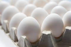 Molto uova bianche Immagini Stock