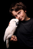 Moluccan Cockatoo With Boy Royalty Free Stock Images