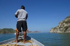 Moluscos no mar fotos de stock