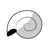 Molusk icon image. Molusk icon over white backgronund. vector illustration Royalty Free Stock Images