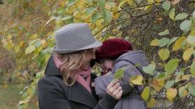 Mom και κόρες που παίζουν στο πάρκο, mom παρουσιάζοντας φύλλα κορών σε ένα δέντρο περιβαλλοντικές μελέτες Στοκ Φωτογραφία