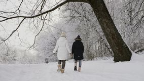 Mom και κόρη που περπατούν στη φύση το χειμώνα απόθεμα βίντεο