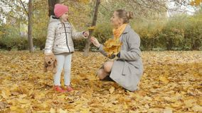 Mom and baby collect yellow fallen leaves in the park stock photo