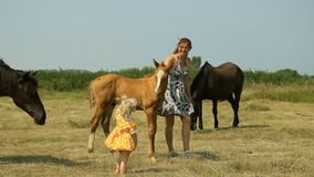 Mom and baby with horses on the field stock video