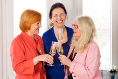 Mom Best Friends Enjoying Glasses of White Wine Royalty Free Stock Photos