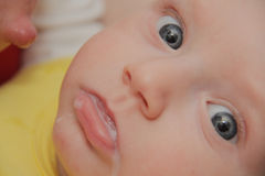 Mom breastfeeding baby boy with breast milk Royalty Free Stock Photography