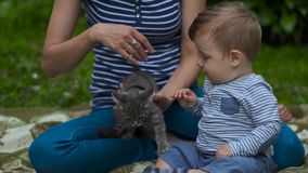 Mom with Child Playing in Garden with Little Gray Kitten. Young Mom with Child Playing in Garden with Little Gray Kitten. Woman stroking a Kitten. Kid looks and stock video