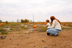 Mom Child Pumpkin Patch Stock Photos