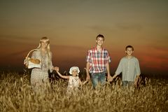 Mom with children on wheat field Stock Images