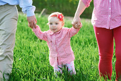 Mom and Dad and daughter are walking on the summer green field Royalty Free Stock Photography