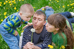 Mom dad and son together blowing on a dandelion in a meadow Stock Photos