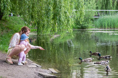Mom and daughter feeding duck in a park on the lake Stock Images