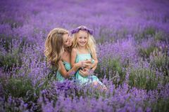 Happy family in a field of lavender royalty free stock photos