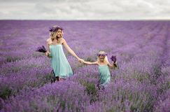 Happy family in a field of lavender. Mom and daughter in a field of lavender stock images