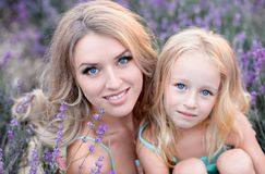 Happy family in a field of lavender. Mom and daughter in a field of lavender royalty free stock photos