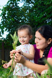 Mom and daughter playing in the field, sitting on the grass. Royalty Free Stock Photography