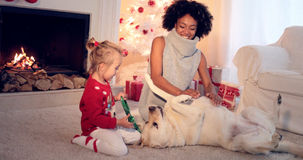 Mom and daughter in sweaters play with pet dog Stock Photography