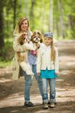 Mom and daughter walking in the park with the same two Shih Tzu dogs stock photo