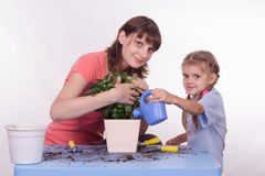 Mom and daughter watering flower Royalty Free Stock Image