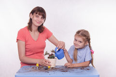 Mom and daughter watering potted flower room Stock Photos