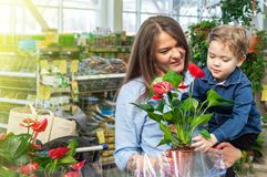 Mom and her baby boy in a plant shop looking at flower. Gardening In Greenhouse. Botanical garden, flower farming royalty free stock photography