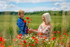 Mom with her son in a magnificent meadow. The boy surprised her mother with red poppies. Mom with her son in a magnificent meadow. The boy surprised her mother royalty free stock photos