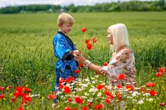 Mom with her son in a magnificent meadow. The boy surprised her mother with red poppies royalty free stock photos