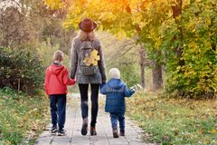 Mom and her two sons are walking in the autumn forest. View from Stock Images