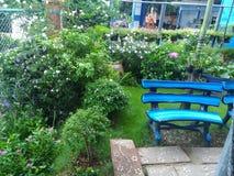 Mom& x27 ; jardin de s image libre de droits