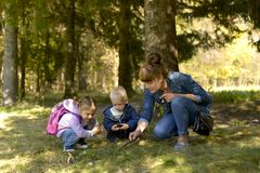 Mom and kids walk in the forest Park in the autumn. royalty free stock photo