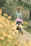 Mom push baby carseat , little daughter sleeping in. Chinese mom push baby carseat in park , little daughter sleeping in , with flowers prospect. is royalty free stock images