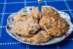 Mom`s homemade soft apple oatmeal cookies