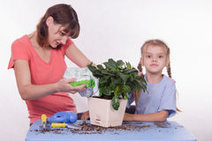 Mom sleeps in the ground with a plant pot Royalty Free Stock Photos