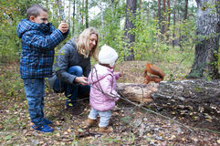the mom and son and daughter feeding squirrel. Royalty Free Stock Image