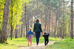Mom, son and daughter walking in the park at sunset stock photo