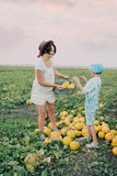 Mom and son on a field with melons Stock Photo