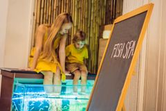 Mom and son at the fish spa royalty free stock photos