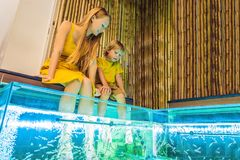 Mom and son at the fish spa royalty free stock image