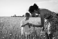 Mom and son playing in the field. Family fun. A beautiful summer day. The joy and fun Stock Photo