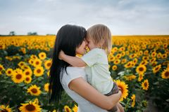 Mom and son are playing in the field of sunflowers royalty free stock photo