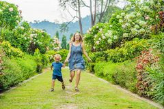 Mom and son are running around in the blooming garden. Happy fam. Ily life style concept Royalty Free Stock Image