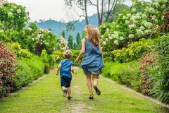 Mom and son are running around in the blooming garden. Happy family life style concept stock photo