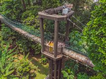 Mom and son tourists at capilano suspension bridge kuala lumpur forest eco-park areial view. Traveling with kids concept royalty free stock photo