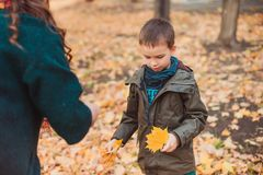 Mom and son walk in the autumn Park. Happy family. Autumn concept. royalty free stock photo