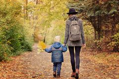 Mom and son are walking in the autumn forest. View from the back.  stock photos