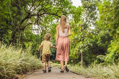 Mom and son are walking in the tropical park royalty free stock images
